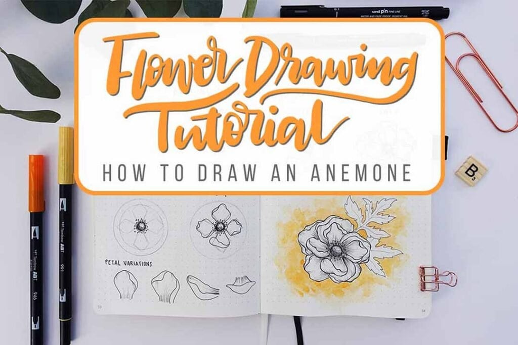 FLOWER DRAWING TUTORIA HOW TO DRAW AN ANEMONE FLOWER