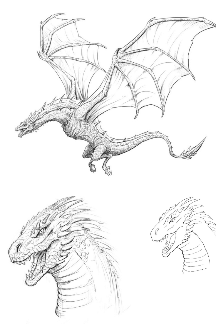 HOW TO DRAW A DRAGON . STEP BY STEP TUTORIAL