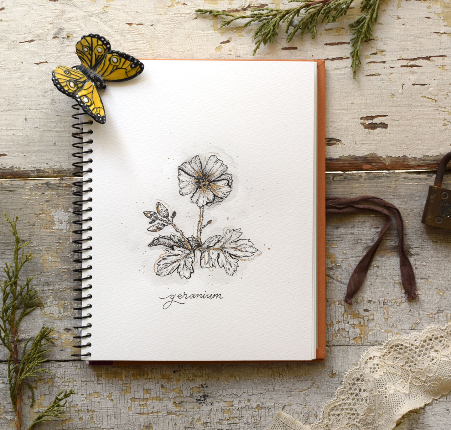 How to Draw Flowers Part 1 Geraniums